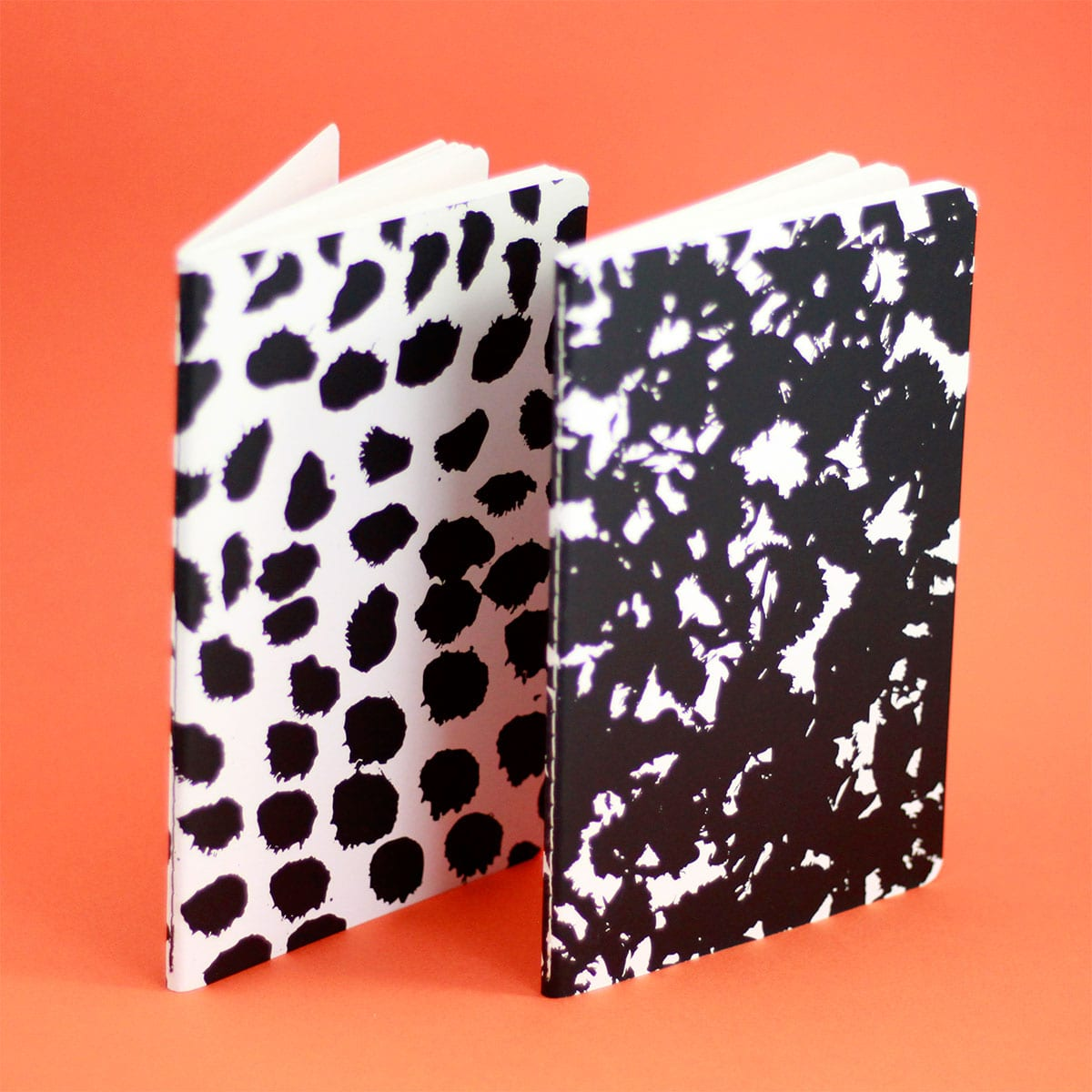 SET OF TWO NOTEBOOKS LICEO